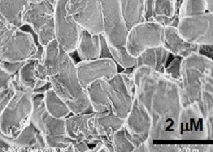 微生物資材の開発のイメージ